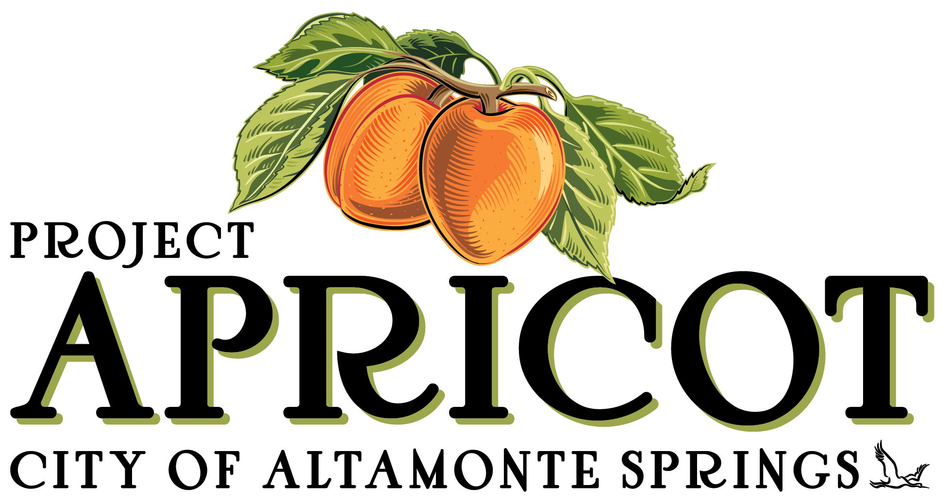 Project APRICOT