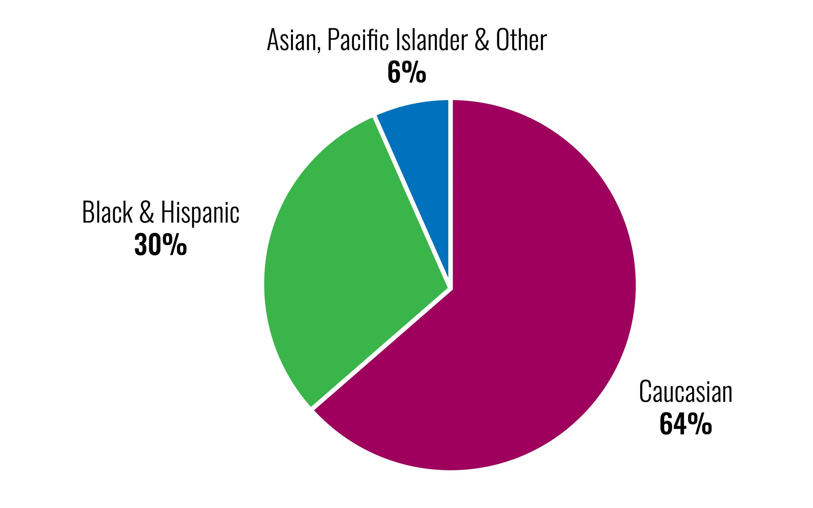Police Diversity Pie Chart - Caucasian 64%, Black & Hispanic 20%, Asian, Pacific Islander & Other 6%